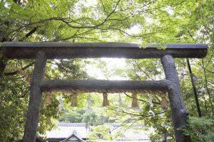 野宮神社鳥居