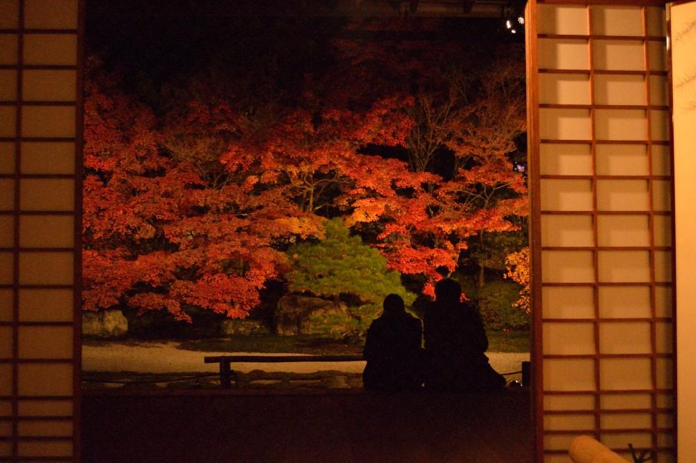 永観堂のライトアップ2016