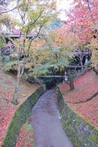 東福寺の紅葉2016