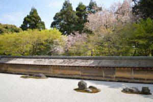 龍安寺の桜2017