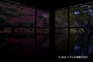 瑠璃光院の紅葉2017
