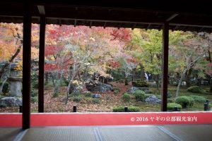 圓光寺の紅葉2017