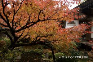 宝泉院の紅葉2017