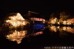 平安神宮しだれ桜コンサート2018
