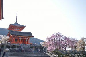 清水寺の桜2018