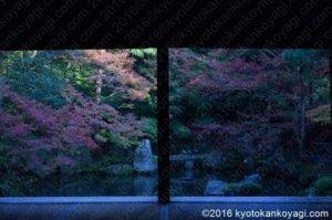 蓮華寺の庭園